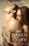 Scarred by Love E-Book Cover