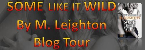 Blog Tour Banner Final