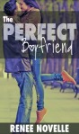 PerfectBoyfriend