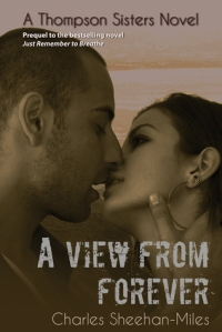 A View From Forever Cover